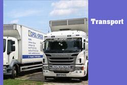 Transport piskląt
