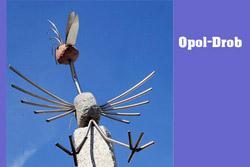 Opol- Drob